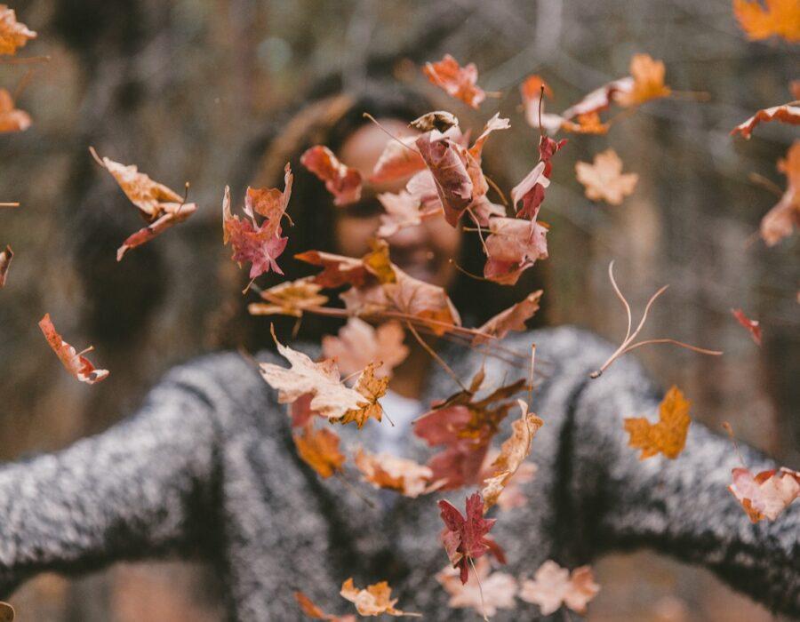 Jesień – czas porządków w ogrodzie